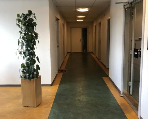 Her er kontorfællesskabets gang på første sal